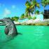Nado con Delfines en Isla Mujeres por Dolphin Discovery