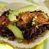 Tacos de Chapulin,Puerto Escondido, Mexico