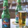 Cerveza Balashi®,Savaneta, Aruba