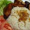 Nasi ayam,Medan, Sumatra Septentrional, Indonesia, Indonesia
